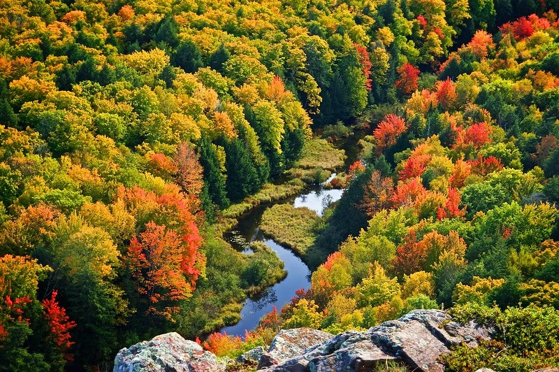 THE BEST PLACES FOR FALL COLORS IN MICHIGAN